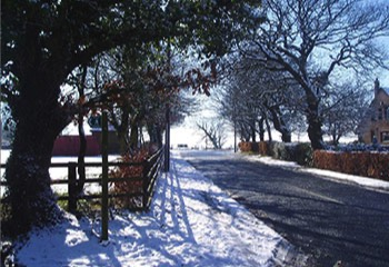 daltonparishcouncil winter road